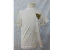 Valley View School PE Shirt with logo